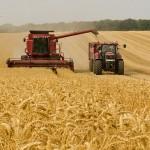 Меры пожарной безопасности в период заготовки кормов и уборки урожая