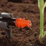 Аграрный сектор Казахстана активно внедряет передовые технологии
