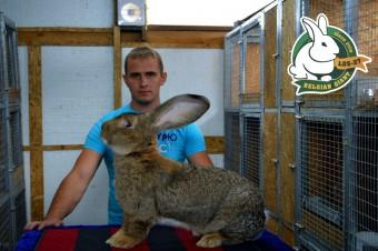 Дмитрий Лапицкий со своим питомцем