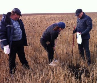 Мариана Кантюр (в центре), Мухамбетжан Акулов (справа) проверка соотвествия требованиям  органического земледелия
