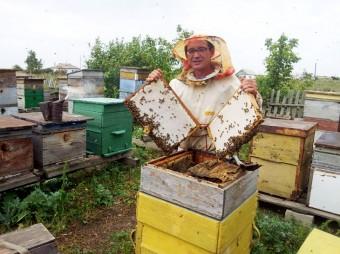 Ербулат-Сарсенбаев-держит-рамки-с-запечатанным-медом-