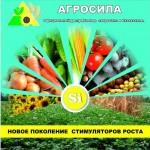 Кремний, как один из главных элементов жизни для растений