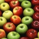 В Южном Казахстане площадь яблоневых садов увеличат в два раза
