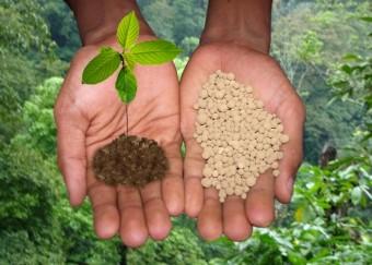 органические-удобрения