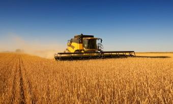 сельхозугодия