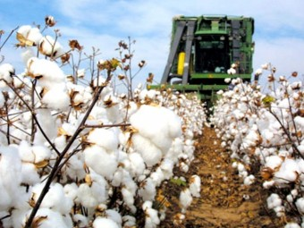 1443808528_cotton-world-production