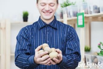 Kartofel_01-1