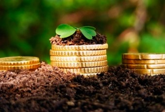 kredit-na-razvitie-selskogo-hozyistva