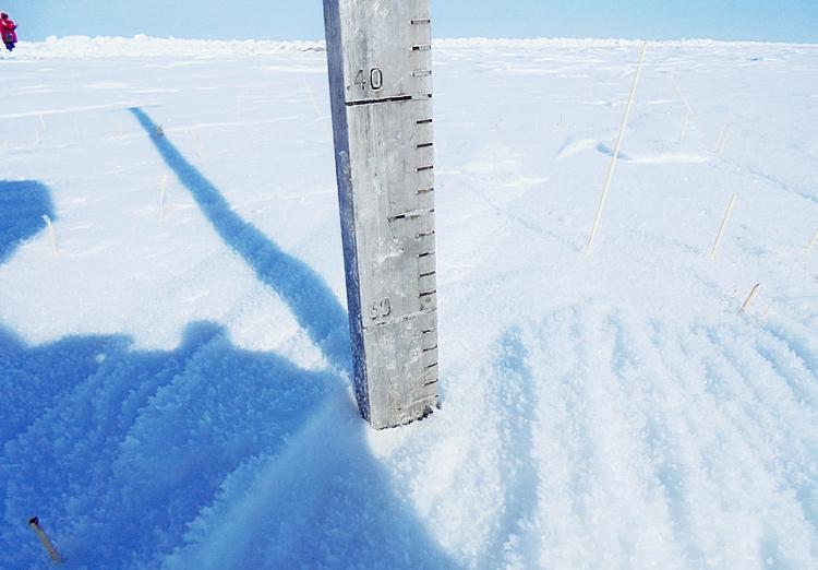 Высота снежного покрова на стерне
