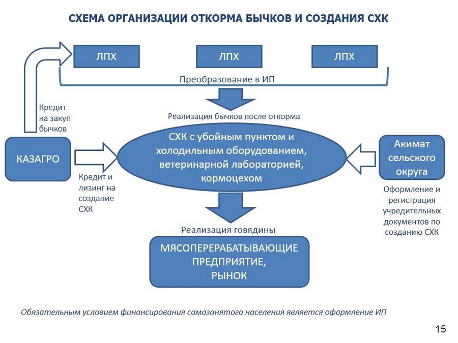 Схема организации откорма бычков