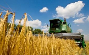 Сельское-хозяйство