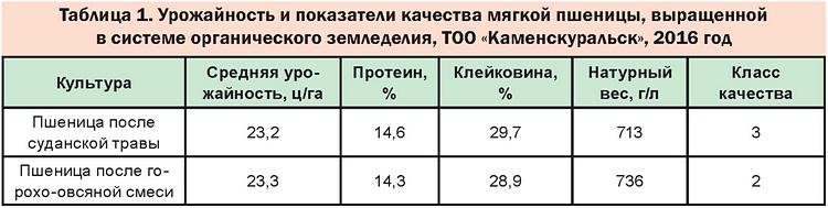 Таблица 1 - Урожайность и показатели качества мягкой пшеницы, выращенной в системе органического земледелия, ТОО «Каменскуральск», 2016 год