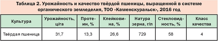 Таблица 2. Урожайность и качество твёрдой пшеницы, выращенной в системе