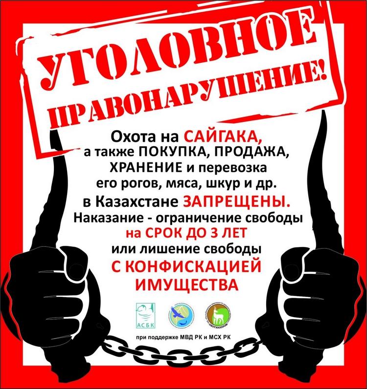 Informatsionnaya-kampaniya-protiv-torgovli-rogami-sajgakov
