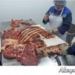 Первый мясной мини-завод открыли в Аягозе