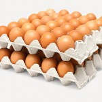 Казахстан наладил экспорт яиц в Афганистан