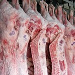 Чтобы вернуть хозяевам коров и лошадей, павлодарские полицейские проверили 50 грузовиков с мясом