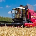 20 августа аграрии СКО приступят к жатве хлеба и масличных культур