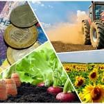 Субсидии на растениеводство-2020