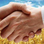 Существует ли типовой устав ревизионного союза, создание которого предусмотрено законом о кооперации?