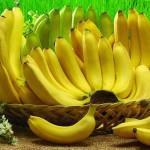 ОҚО-да бағбан бір түптен 80 келі банан алмақ
