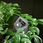 Flora Robotica: симбиоз растений и роботов