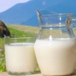 Сложности маркетинга: Как продают сухое кобылье молоко