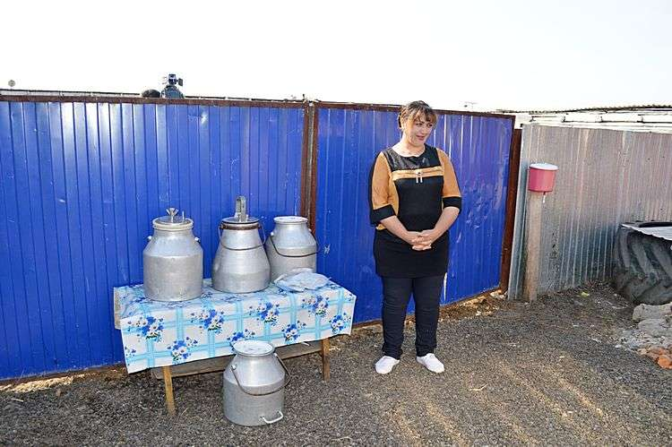 Молоко готово к сдаче. Фото: АгроИнфо