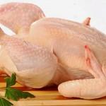 Минсельхоз РК прокомментировал запрет России на ввоз мяса птицы