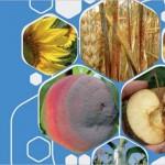 Новый справочник ФАО: каталог здоровья растений в одной книге