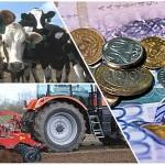 Оформить субсидии легко и быстро помогают в Палате предпринимателей