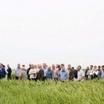 День семеновода, или Откровенно о семенах (для анализа)