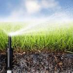 А. Күрішбаев: Әлемде smart agriculture – «ақылды ауылшаруашылығы» кең тараған