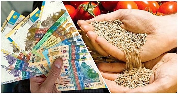 subsidirovanie-semenovodstva