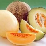 70 процентов урожая дынь мактааральские дехкане экспортируют за границу