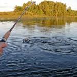 В ВКО защитят интересы рыболовов