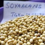 ОЭСР и ФАО отмечают замедление темпов роста потребления продовольствия