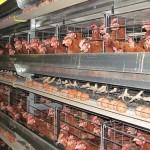 В ЮКО будут постепенно укрупнять сельхозкооперативы