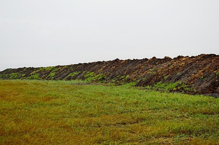 Фото 1-1. Часть бурта укрыта плотным слоем соломы – это прошлогодний перегной, другая открытая часть – это навоз текущего года / Фото: ©АгроИнфо