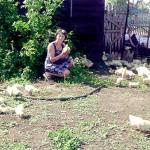 Многодетная мама прикупила 700 гусят