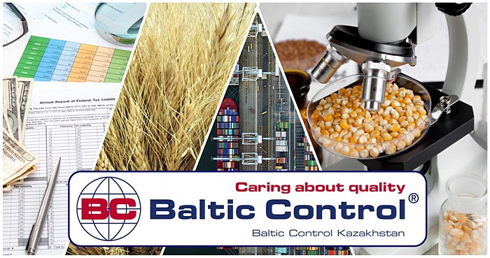 Baltic Control KZ collage