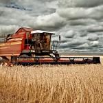 Новые горизонты «АгромашХолдинга»