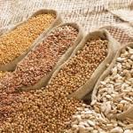 Сохраним масличные культуры
