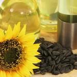 Китай – один из основных импортёров семян масличных и растительных масел из Казахстана