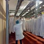 Иран мемлекетіне 18 тонна қой еті жіберілді