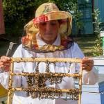 В Опытном поле ВКО выводят чистопородных среднерусских пчёл