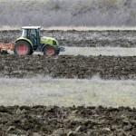 ФАО прогнозирует новый рекорд производства зерновых в мире