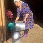 Зерендинский молочный кооператив, созданный весной этого года,  поставил на кокшетауские заводы более 500 тонн молока