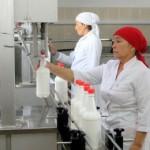 В ЮКО сельскохозяйственный кооператив увеличил производство шубата