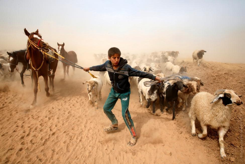 Фото: ©REUTERS/Ahmed Jadallah